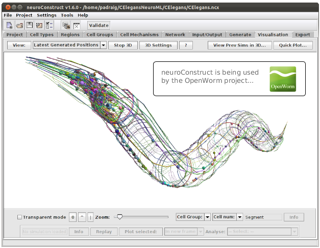 The OpenWorm project is using neuroConstruct to develop detailed models of the C. elegans nervous system.